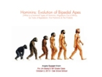 Hominins: Evolution of Bipedal Apes